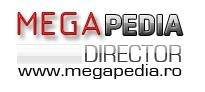 Megapedia Web Director