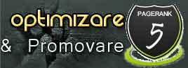 Blog Optimizare & Promovare siteuri